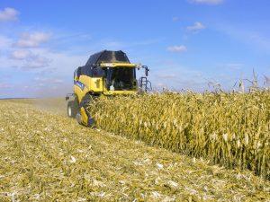 купить жатки кукурузные